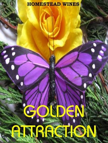 golden-attraction