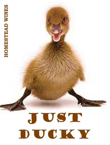 just-ducky