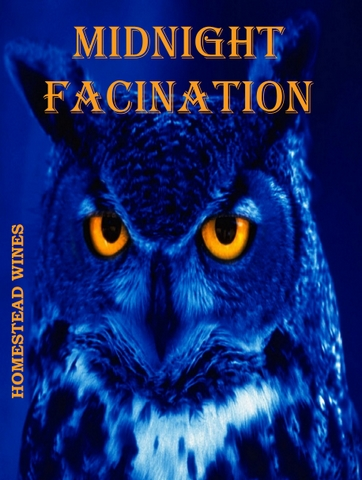 midnight-facination