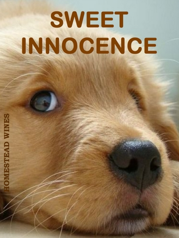 sweet-innocence