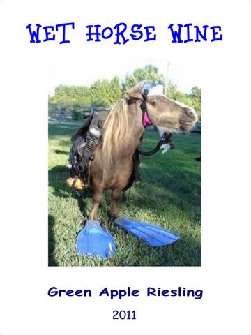 wet-horse